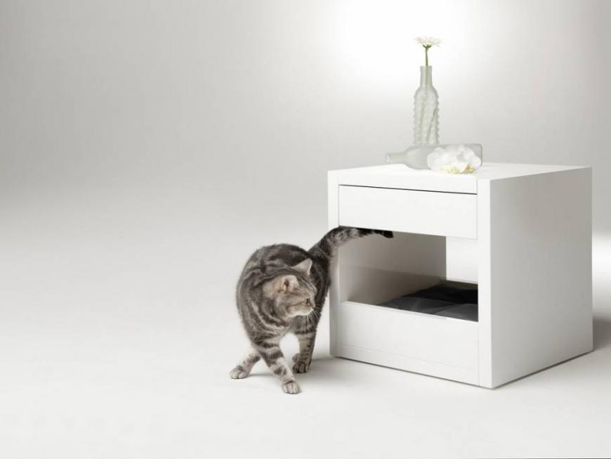 BINQ DESIGN BLOQ for Cats and Dogs