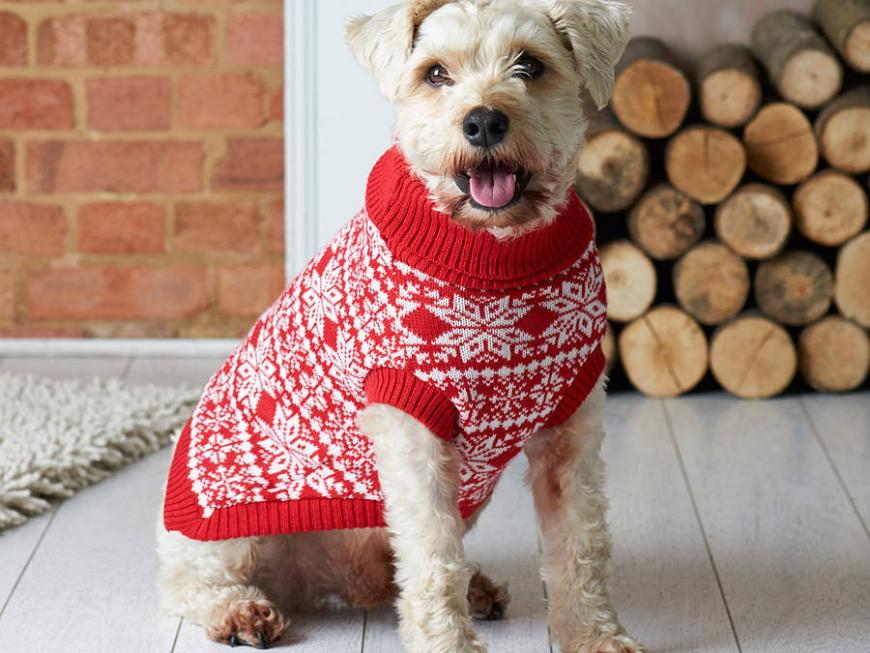 Traditional Fairisle Knitted Christmas Dog Jumper